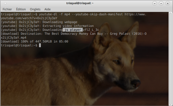 Youtube-dl télécharge Js player | Trisquel GNU/Linux - Run free!