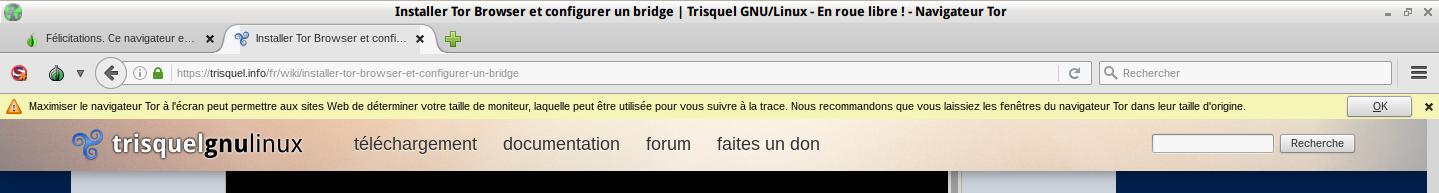Ne_pas_maximiser_le_naviguateur_tor.png
