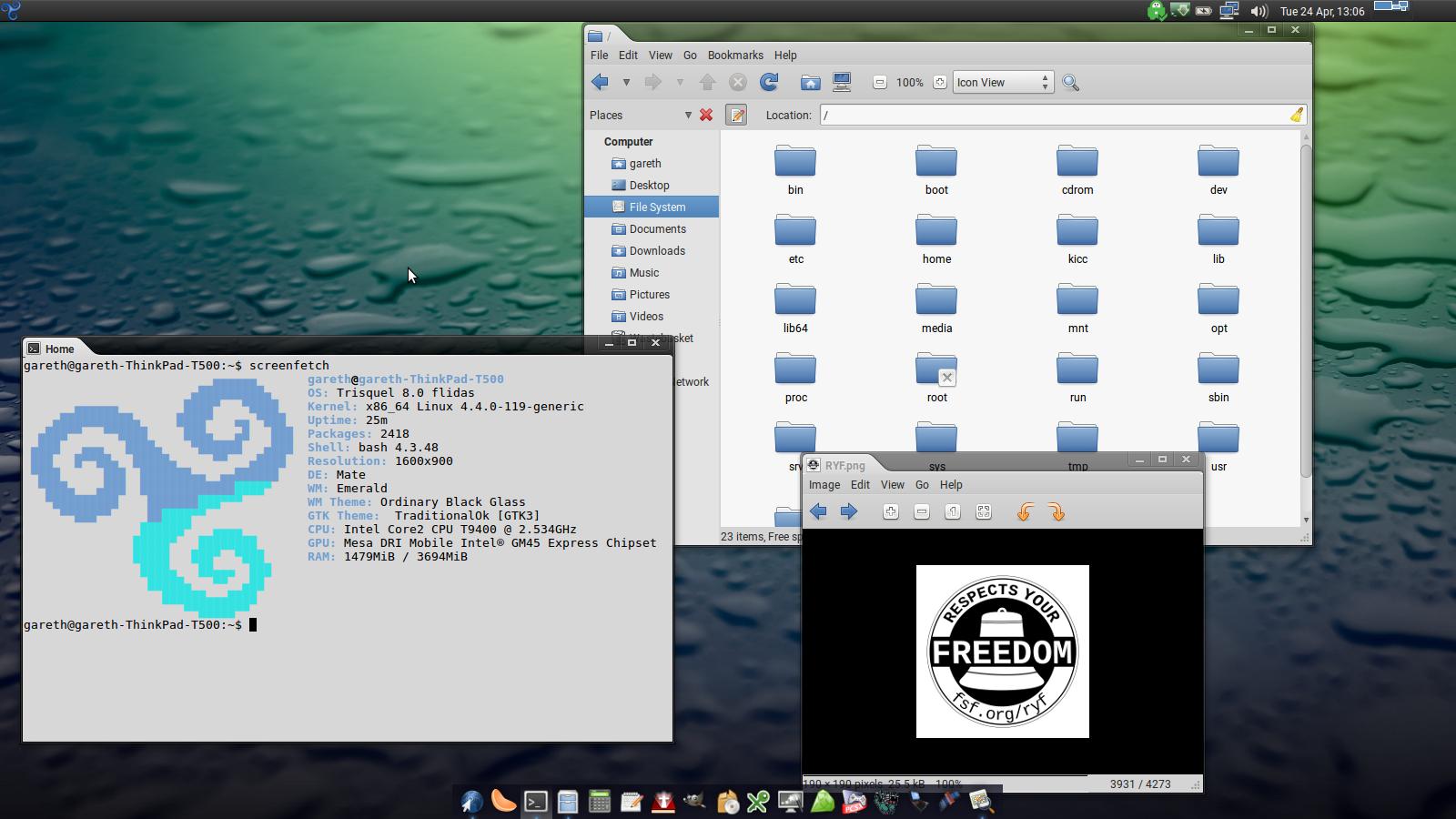 Trisquel 8 Flidas screenshots  | Trisquel GNU/Linux - En roue libre !