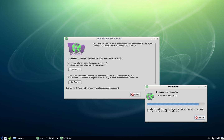 Tor_Browser-Bridges_7.png