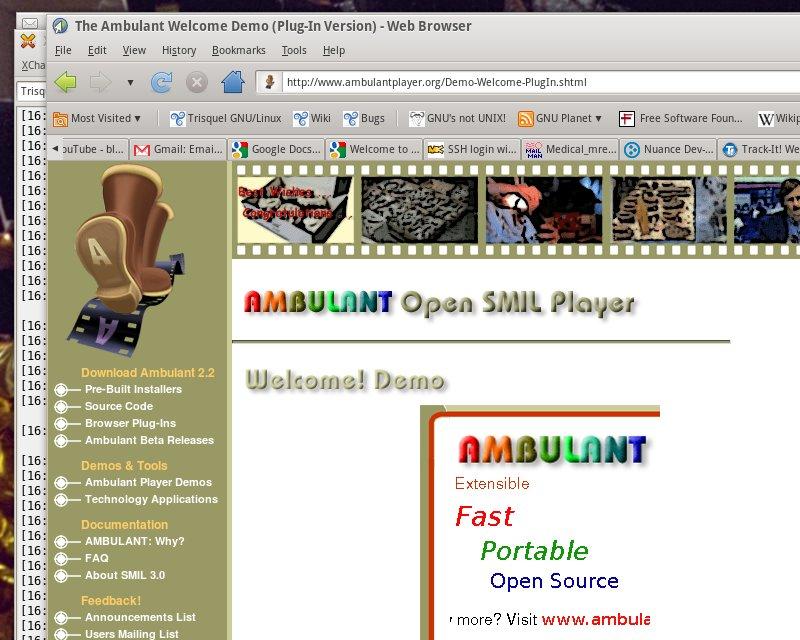 Playerdiy web player standaloneinstaller. Com.
