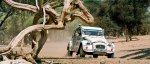 2CV Citron Raid Paris Dakar  .jpg