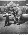 Houdini-Elephant.jpg