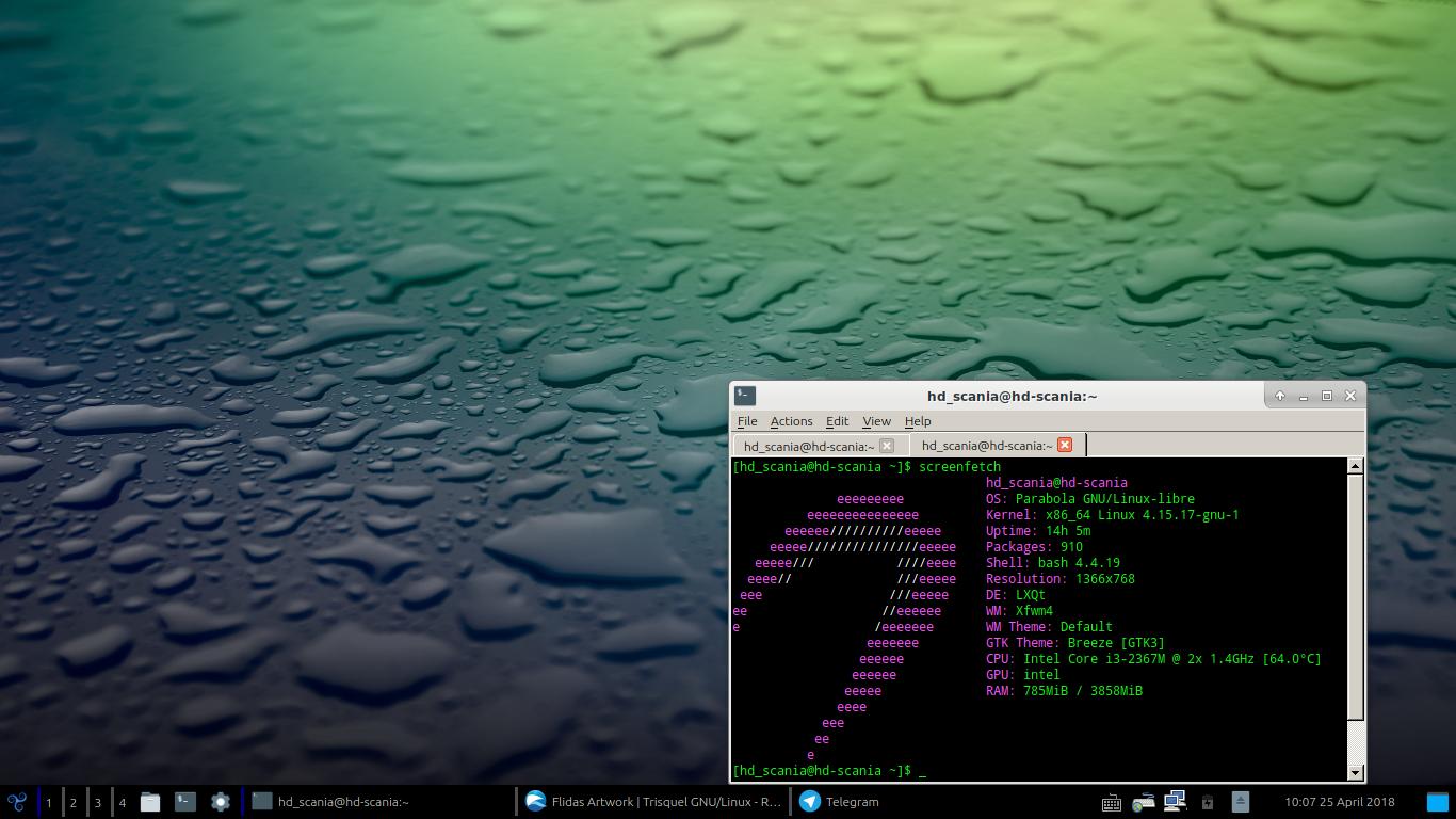 Flidas Artwork | Trisquel GNU/Linux - En roue libre !